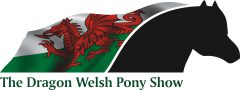 The Dragon Welsh Pony Show